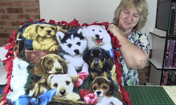 No Sew Dog/Cat Bed