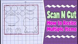 How to Resize Multiple Items on Your Scan n Cut Machine